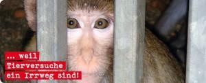 Buerger gegen Tierversuche eV