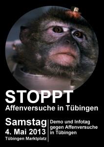 Affenflyer_vorn_Tuebingen